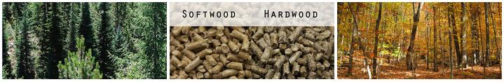 Top wood pellet myths explained woodpellets