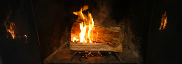 Firewood Restriction