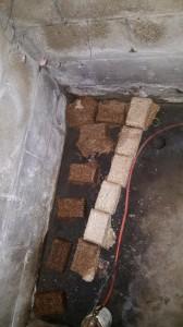 Absorbency of Wood Bricks